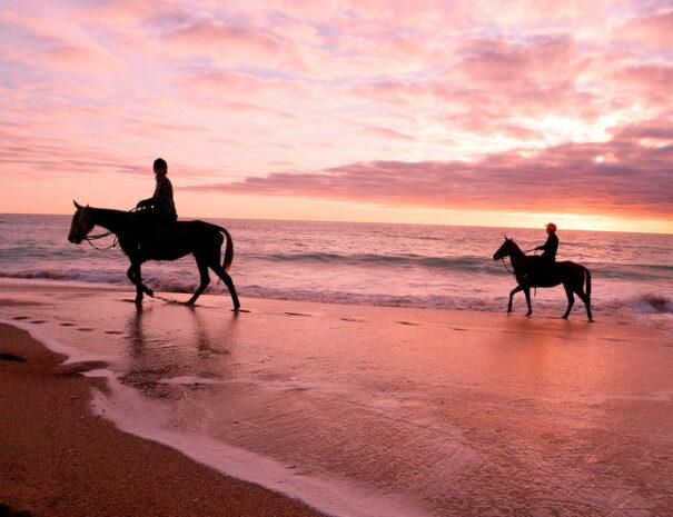 ruta-montar-Paseo a caballo por la playa, Mangueta-El Palmar, Conil, Vejer. Trafalgar-sunset-puesta de sol