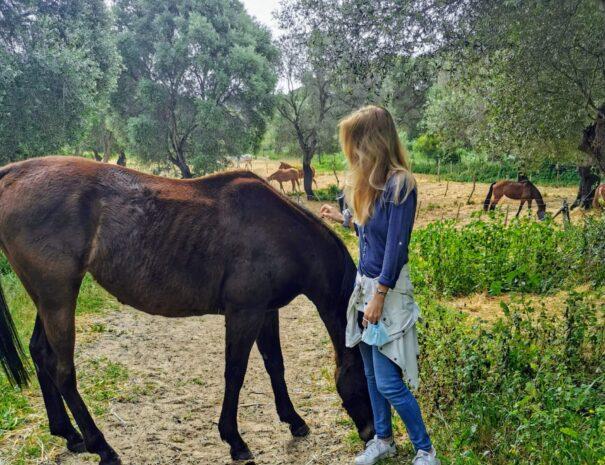 ruta-montar-Paseo a caballo por la playa, Mangueta-El Palmar, Conil, Vejer. Trafalgar